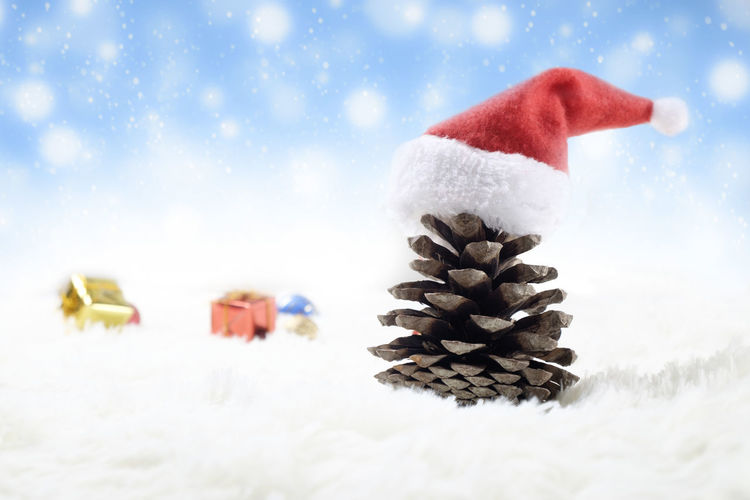 Close-Up Of Pine Cone With Santa Hat On Snow