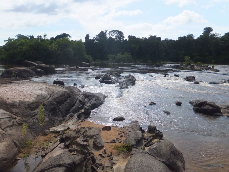 Beautiful nature scene at Raleighvallen Beautiful Nature Beautiful Scenery Beauty In Nature Cloud - Sky Day EyeEmNewHere Landscape Nature Nature Reserve No People Outdoors Rainforest River River View Riverside Rock - Object Rocks Rocks And Water Scenics Sky Suriname Tranquil Scene Tranquility Tree Water
