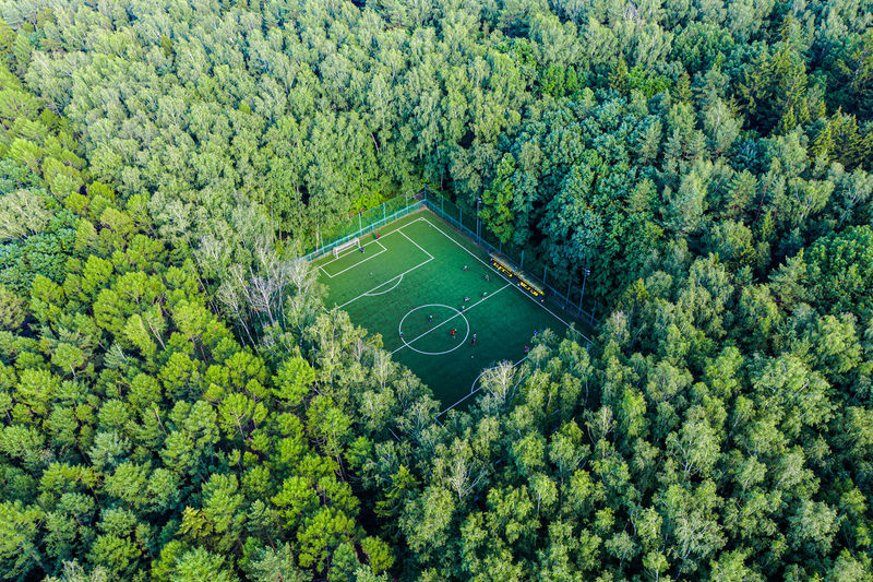 Sport in forest