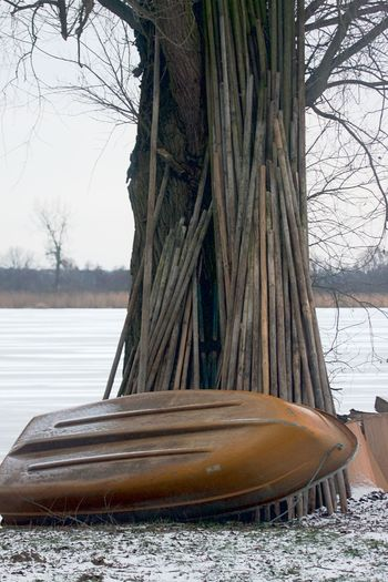 Row Boat Bare Tree Cold Temperature Day Lake Nature Nautical Vessel No People Outdoors Park Position Snow Tree Tree Trunk Water Winter