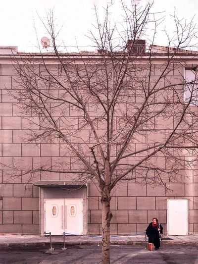 Bare Tree Building Exterior Built Structure Architecture Tree Outdoors Day City Winter One Person Real People EyeEmBestPics EyeEm Best Shots EyeEm Masterclass The Week On EyeEm EyeEm Gallery Architecturelovers