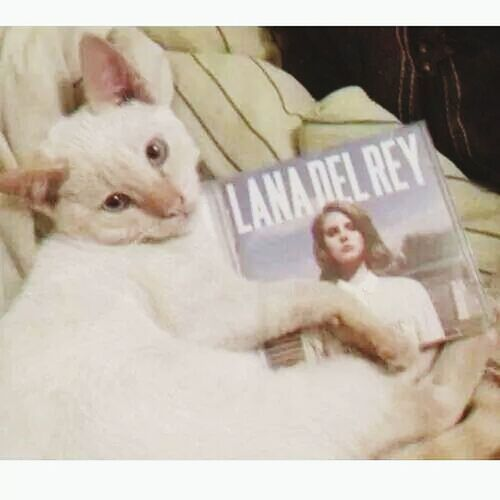 Lana Del Rey ♥♥