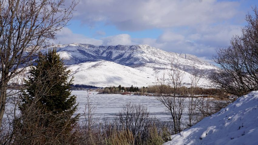 winter wonderland Ice Bare Trees Icy Lake Pineview Dam Snow Mountain Winter Cold Temperature Mountain Range Tree Nature Cloud - Sky Sky Snowcapped Mountain Scenics Beauty In Nature Outdoors No People Lake