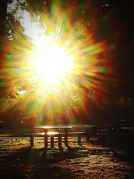 sunrise 3 Multi Colored Sunlight Sunbeam Sky Bench Sun Park Sunrise Park Bench