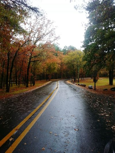 It's that time of year again! Fall Beauty Fall Colors Fallen Leaves Rainy Road