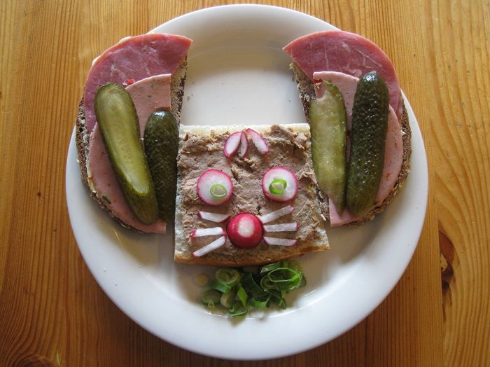 Elevated view of sandwich representing mouse