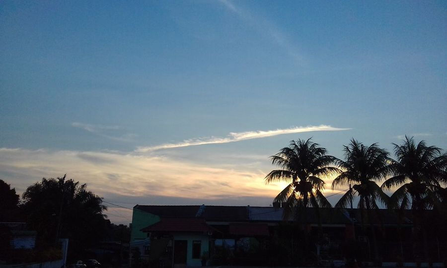 Almost 7 Pm Tree Palm Tree Cloud - Sky Sunset Silhouette Built Structure Architecture Sky Outdoors Building Exterior No People City Nature Day