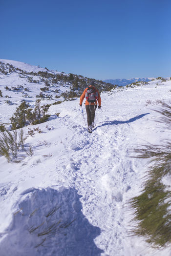Rear view of male hiker walking on a sunny day Leisure Activity Real People One Person Lifestyles Sport Sky Snow Motion Nature Cold Temperature Day Full Length Winter Adventure Clear Sky Vacations Trip Beauty In Nature Men Outdoors Unrecognizable Person