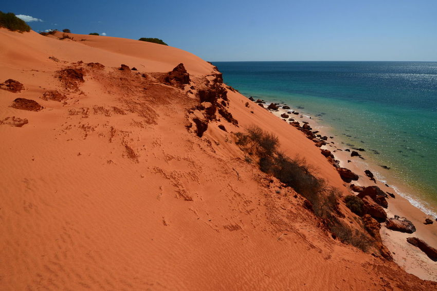Red sand dune in François Peron NP. Shark Bay. Western Australia Australia Australian Landscape National Park Perth Shark Bay Australia Western Australia WesternAustralia Arid Climate Beach Beauty In Nature Denham François Peron Horizon Over Water Idyllic Monkey Mia Nature Non-urban Scene Protected Area Red Dunes Remote Sand Sand Dune Scenics - Nature Seascape Tranquil Scene