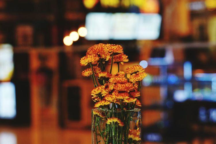 Close-up of flower vase against blurred background