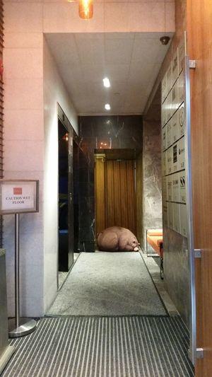 Sleeping Bear Corridor