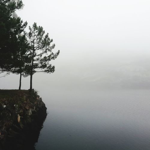 Tree Tranquility Sky Outdoors Fog No People Water Lake Nature Day Beauty In Nature Reflection The Week On EyeEm Cee