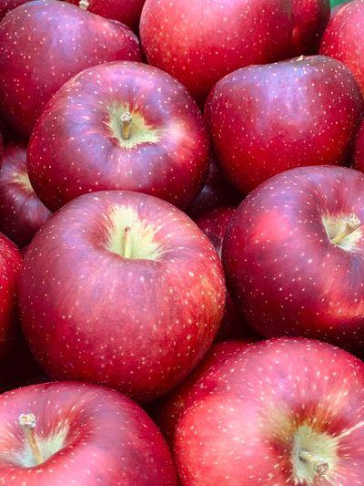 Apple りんご Food And Drink Wellbeing Full Frame Fruit Apple - Fruit