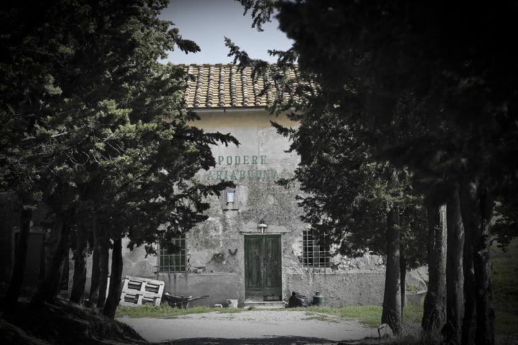 Architecture Ariabuona Building Exterior Built Structure No People Outdoors Podere Tree Tuscany Tuscany Countryside