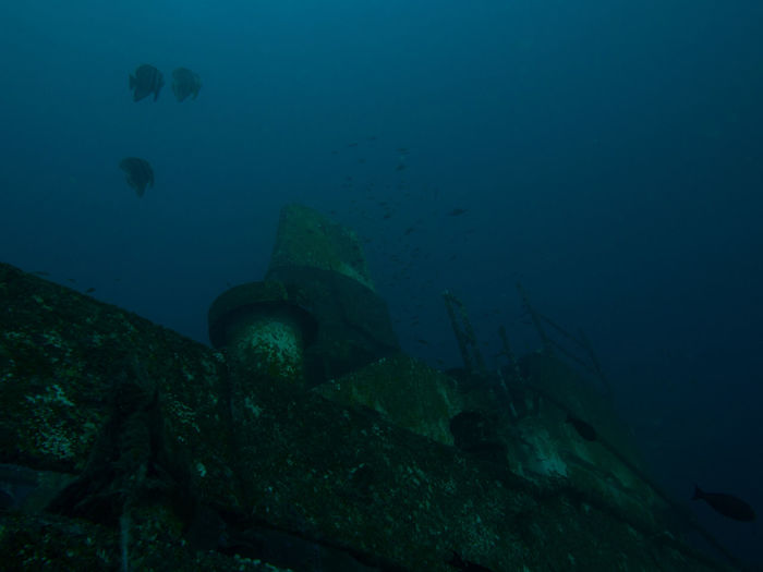 Wrack at Gili Trawangan Blue Ocean Outdoors School Of Fish Scuba Diving Sea Sea Life Ship Tanker Under The Sea Under Water Under Water Photograpgy UnderSea Underwater Uw Photograp Uw Photography Wrack Wrack Dive