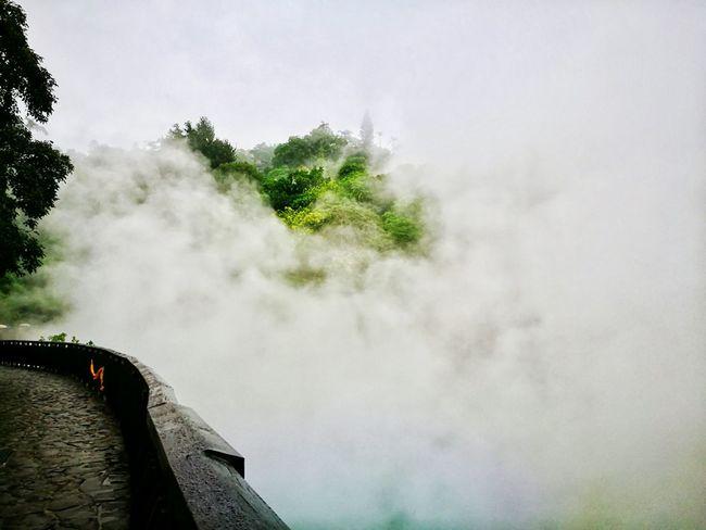 地熱谷 Tree Nature No People Beauty In Nature Outdoors EyeEm Best Shots EyeEm Best Shots - Nature EyeEm Nature Lover Eye4photography  Enjoying Life EyeEm Gallery EyeEm Best Shots - Landscape Xinbeitouhotspring Xinbeitou Power In Nature Taiwan EyeEm Travel