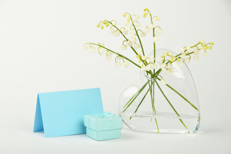 Glass heart vase with lily of the valley flowers and gift box Copy Space Gift Box Romantic Valentine Valentine's Day  Day Flower Flowers Freshness Gift Glass - Material Heart Lily Of The Valley Lily Of The Valley Flower Lily-of-the-valley Message Studio Shot Valentine's Day - Holiday Valentines Day Valentinesday Vase