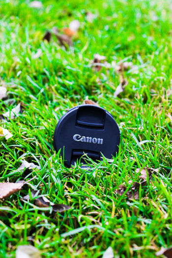 Canon Is My Love Nature Potography