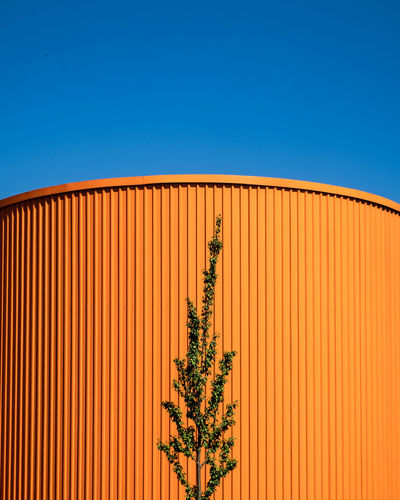 Urbanplantseries Urban Geometry Architectural Column Architectural Feature Architecture Berlinmalism Building Exterior Built Structure Clear Sky Copy Space Fujix_berlin Fujixe3 Fujixseries Minimal Minimalism negative space No People Orange Color Outdoors Plant Ralfpollack_fotografie Sky Urbanplantseries The Architect - 2018 EyeEm Awards