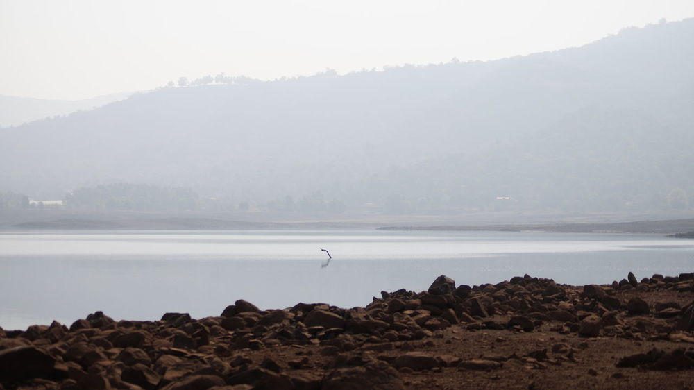 Animal Themes Animals In The Wild Beauty In Nature Bird Cold Temperature Day Fog Foggy Hazy  India Lake Mist Mountain Mountain Range Nature No People Outdoors Pune Scenics Sky SonyAlpha58 Tranquil Scene Tranquility Tree Water