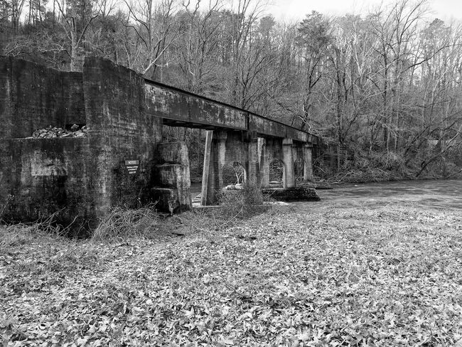 Abandoned Architecture Bare Tree Blackandwhite Bridge - Man Made Structure Built Structure Day Nature No People Outdoors River Train Tree Vintage Water EyeEmNewHere
