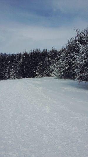 Snow ❄ White Memories LastWeekend  Landscape Photo