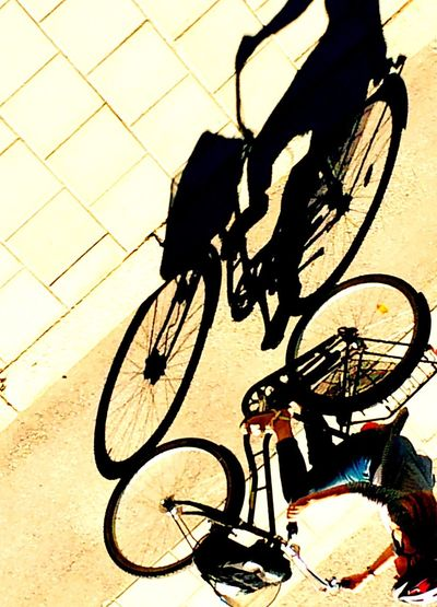 Shadows bicycle real people lifestyles high angle view Transportation mode of transport riding one person shadow land vehicle low section men human leg outdoors Sunlight cycling day Adapted to the City The City Light CyclingUnites Cyclist Waysofseeing Bicycle Real People Lifestyles High Angle View Transportation Mode Of Transport Riding One Person Shadow Land Vehicle Low Section Men Human Leg Outdoors Sunlight Cycling Day Adapted To The City The City Light CyclingUnites The Street Photographer - 2017 EyeEm Awards Live For The Story Let's Go. Together. Sommergefühle Mix Yourself A Good Time An Eye For Travel Press For Progress Adventures In The City