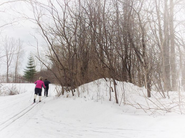 IPS2016People Winter Lunch Break Enjoying Life Skiing Healthy Exercise