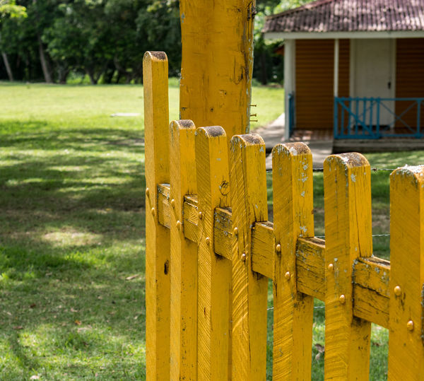 Birán, Cuba - September 1, 2017: A yellow painted fence on the plantation where Fidel Castro was born. Partial view of the guest hotel can be seen in the background. Castro Family Plantation Cuba Architecture Barrier Biran Boundary Built Structure Close-up Day Fence Fidel Castro Field Focus On Foreground Grass Green Color Nature No People Outdoors Plant Protection Safety Security Wood - Material Yellow