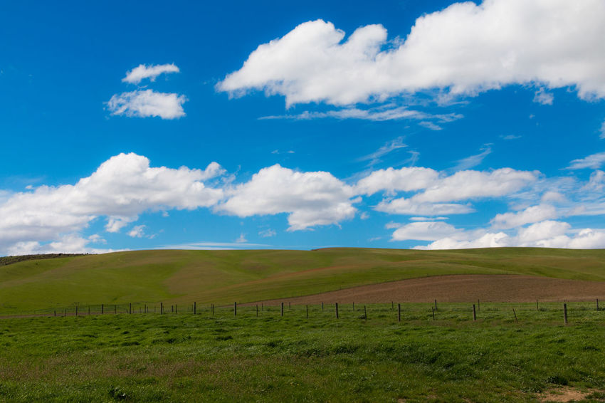 Agriculture Blue Blue Sky Blue Sky And Clouds Clear Sky Cultures Day Environment Field Grass Green Color Hill Land Landscape Lush - Description Nature No People Outdoors Pasture Rural Scene Scenics Sky Social Issues Sunny Water