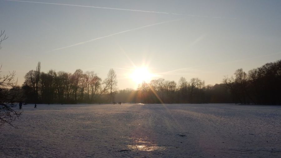 Winter Snow Cold Temperature Sunlight Sun Nature Sunset Tree Beauty In Nature Sunbeam Bare Tree Scenics Tranquil Scene Sky Outdoors Landscape No People Day