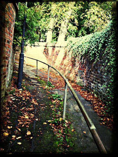 Walking Path Hills Streets