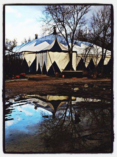 Entre el cielo y la tierra pasa la tarde....en el circo.....