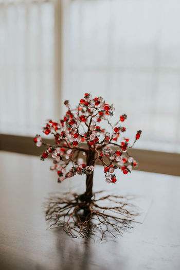 Close-up of flowering plant on table