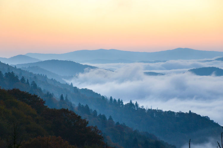 Great Smoky Mountains  Great Smoky Mountains National Park Beauty In Nature Cold Temperature Day Fog Forest Hazy  Idyllic Landscape Mist Mountain Mountain Range Nature No People Outdoors Remote Scenics Sky Sunset Tranquil Scene Tranquility Tree Winter