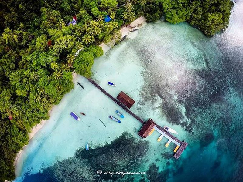 Again, beautiful Raja Ampat Jetty Beach Rajaampat Papua INDONESIA BeautifulIndonesia Beautifulrajaampat Wonderfulindonesia Indonesiaplayground 1000kata Aerialphotography Dronephotography Djiphantom Djiphantomindonesia Djiphantom2 Instalike Instagram Instamoood Photooftheday Dronepointofview Droneartwork