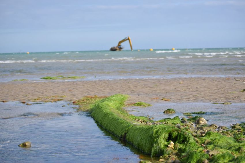Moby Digg stuck on Worthing beach Sea Beach Water Nature Outdoors Sky Horizon Over Water Day Lancing  Summer Wildlife Photography Digger Stuck Mobydick Seaweed Rockpool Pipe Worthing Sand Wave