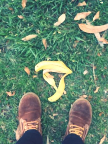 Through live when you see a banana peel you have 2 options: either you step on it and you know you are going to fall or you step aside and continue walking...Showcase April This Is A Banana Bananas Banana Peel Banana Grass Caution ⚠️ Alertness Brown Boots Floortraits Floortrait Standing Looking Down High Angle View EyeEm Best Shots EyeEm Nature Lover EyeEm Gallery Eyeemphotography Fruit Paint The Town Yellow