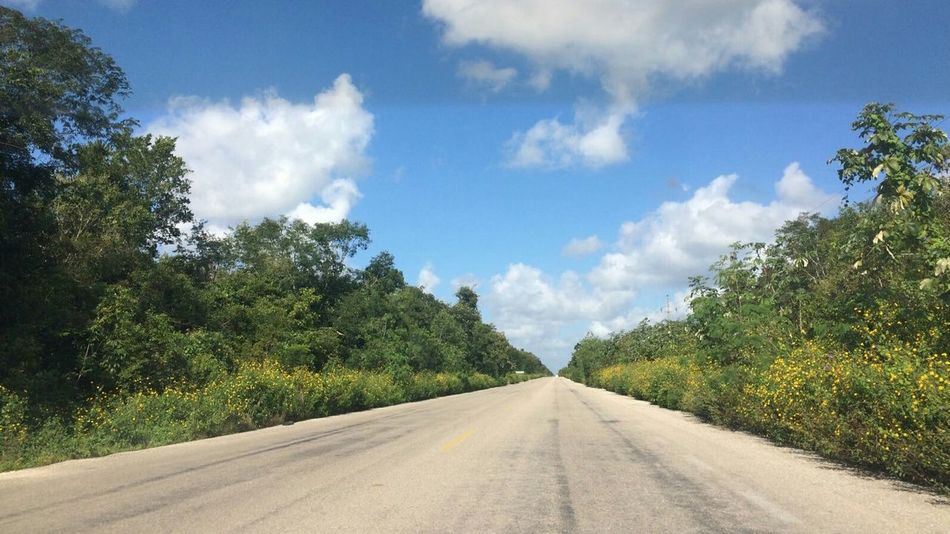 Roadtrip Road Tree Cloud - Sky Landscape Sky Day Nature No People The Way Forward Blue Outdoors Jungle Mexico Yucatán, México Paisajes Naturales Panoramic Landscape Nature Scenics Beauty In Nature Sommergefühle Let's Go. Together. Been There. Done That. Lost In The Landscape