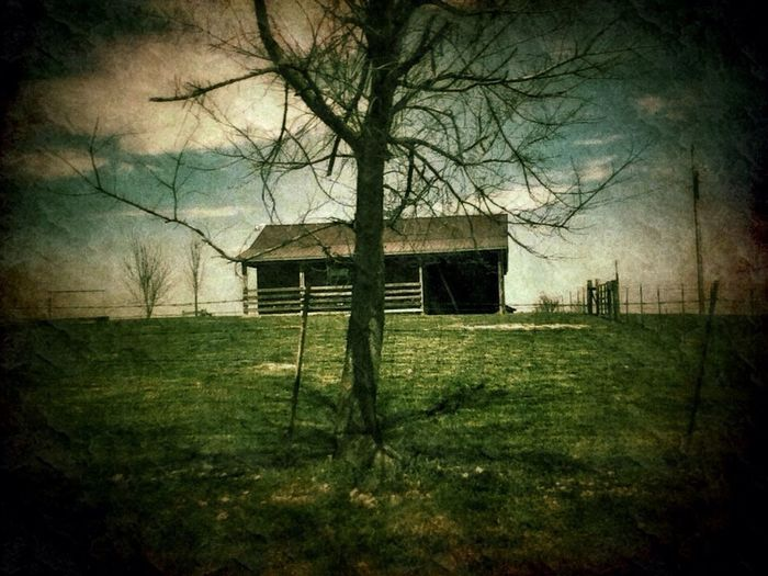 Rurex Drive By Shooting For The Love Of Trees ~ For The Love Of Barns