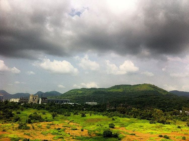 Perfect Synergy Just another day! Navimumbai Nature Scenery NewBombay Officeview Mahape Afternoon
