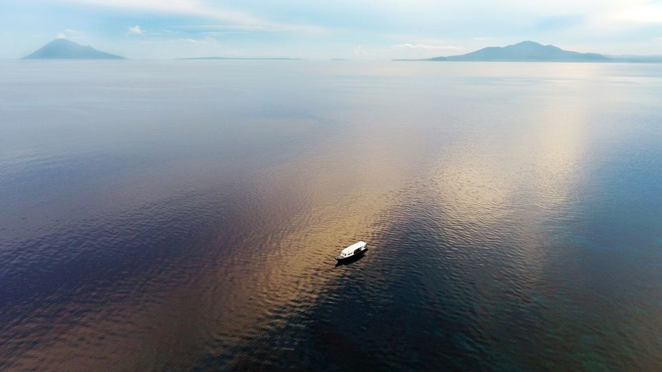 Lost In The Landscape Animal Wildlife Water Drone  Dronephotography Birds Eye View Drone Photography Sand Day Nature Sunset Outdoors Sea Scenics Swimming Mountain Beauty In Nature Sky Sea Life EyeEm EyeEm Best Shots EyeEm Nature Lover EyeEm Gallery