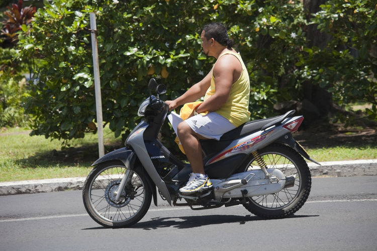 Man Riding Motor Bike - Rarotonga, Cook Islands, Polynesia, Oceania Adult Athlete Beard Bike Candid Casual Close-up Cook  Cool Driving Honda Islander Islands Journey Man Mid Moped Motor Motorbike Motorcycle Muscular Overweight Pacific People Polynesia Polynesian Ponytail Portrait Profile Rarotonga Riding Road Scooter Shirt Shoes Shorts Sitting Speed Sport Street Summer Tattoo Tourism Traffic Transportation Travel Tropics Vacation Vehicle Young Real People Land Vehicle Sunlight Full Length One Person Day Side View Mode Of Transportation Casual Clothing Lifestyles Leisure Activity Shadow Young Adult Outdoors Nature Tree