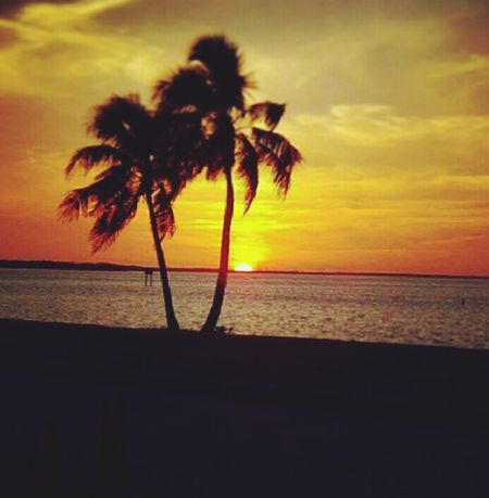 Goldensunset Tropicalparadise Beautiful Relaxing Magicalplace Romantic❤