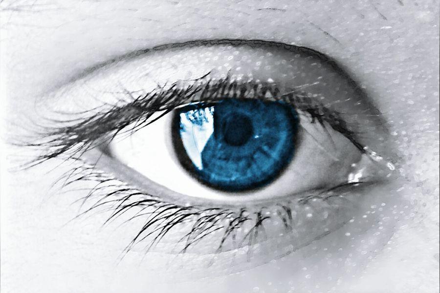 Blue eyes! Eyes4photography EyeEm First Photo Eyeemfirstphoto EyeEm Gallery Photography Blue Eyes Beautiful Awsm Art Beauty EyeEm Best Shots Eye4photography  EyeEm Best Edits EyeEm Best Shots - Black + White Followme Swagg Bestoftheday BestEdits EyeEm Nature Lover EyeEm EyeEm Best Shots - Nature EyeEmBestPics Eyeem Philippines Eyemphotography Pastel Power
