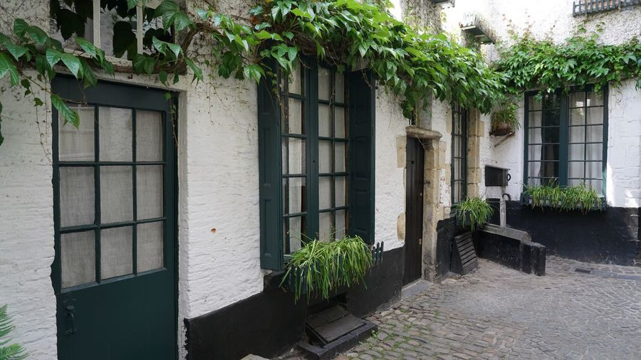 The Vlaeykensgang is a small alley close to the city hall of Antwerp. This small historic alley is a throw-back to the late Middle Ages, a time when many streets weren't wider than a doorway. Vlaeykensgang Antwerp Old City Streets Picturesque Street Picturesque Place Historical Place Alley White Paint Old Street Old Houses Old Architecture Tourist Destination Tourist Attraction  Cobblestone Streets Architecture Built Structure Plant Building Exterior Building Day No People Growth Wall - Building Feature Entrance Outdoors House Leaf Sunlight Door Window
