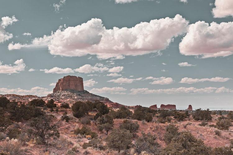 Arizona dreaming, landscape with rocks
