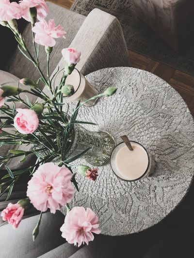 Flower Flowering Plant Pink Color Freshness Plant Beauty In Nature High Angle View Fragility Nature Petal Vulnerability  No People Growth Flower Head Close-up Inflorescence Indoors  Table Day Softness