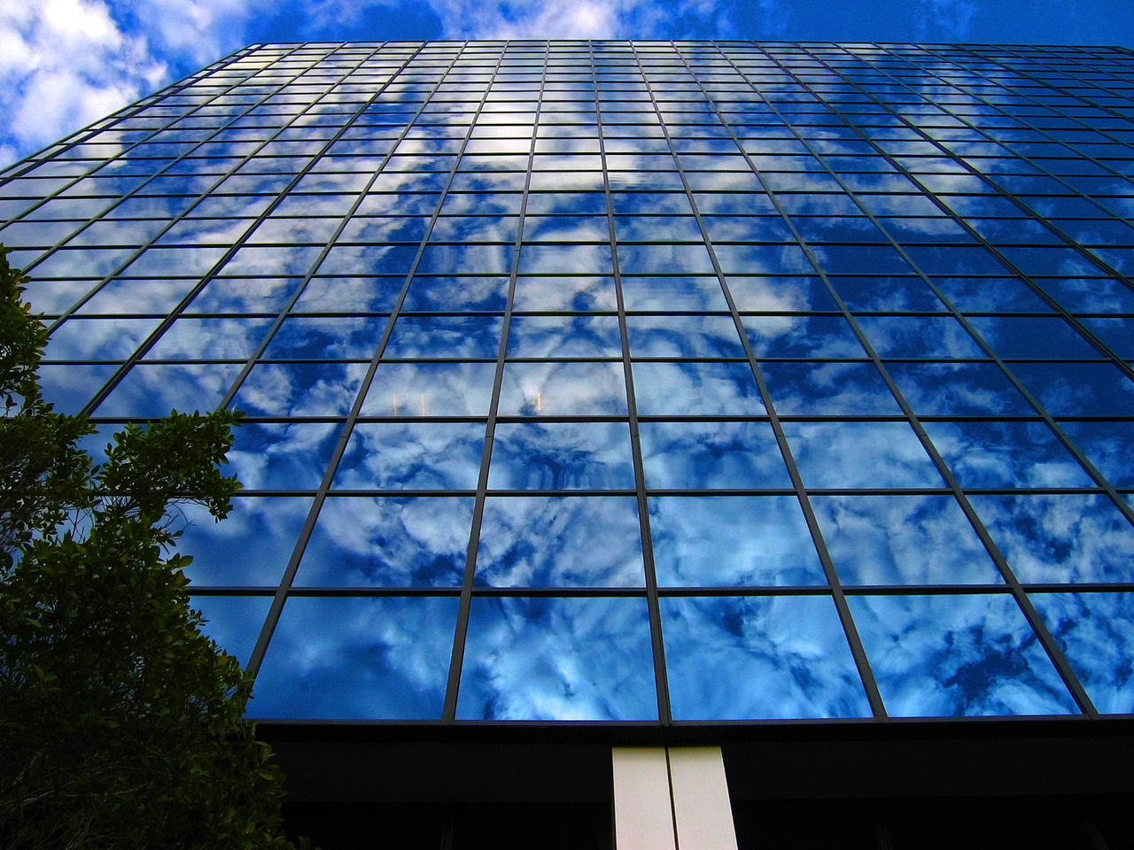 low angle view, sky, architecture, cloud - sky, built structure, blue, modern, day, building exterior, no people, outdoors, growth, skyscraper, nature, tree, city
