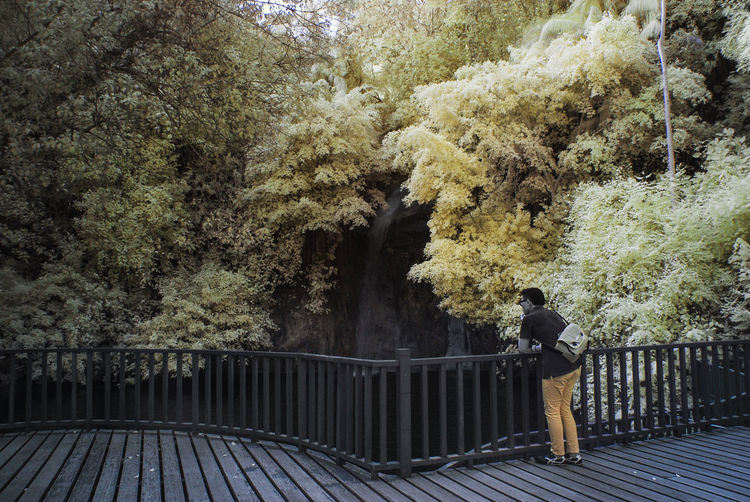 An infrared view of wooden platform with yellow foliage. Infrared Beauty In Nature Color Infrared Footbridge Full Length Infrared Photography Landscape Leisure Activity Lifestyles Nature One Person Outdoors People Railing Real People Standing Tranquil Scene Tree Water Yellow Foliage Young Adult